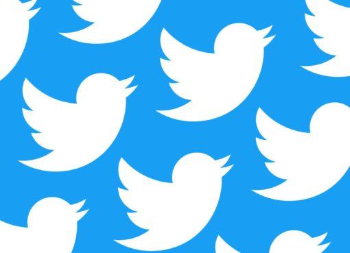 O Twitter é uma das maiores redes sociais do mundo, e com os muitos milhares de utilizadores é normal que se encontrem muitas contas inativas.