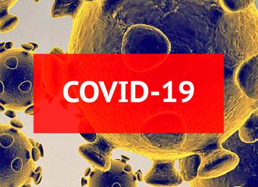 COVID-19: Portal da SNS 24 permite fazer autodiagnóstico de forma simples e rápida – Mundo Smart - mundosmart