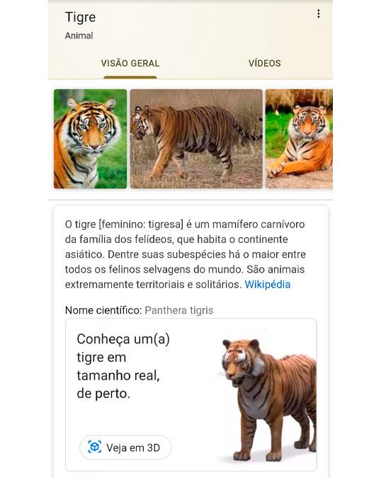 Google permite ver animais em 3D e com opção de os teres na tua casa – Mundo Smart - mundosmart
